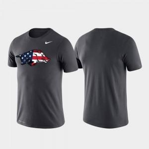 Men's Anthracite Americana Legend Performance Arkansas Razorbacks T-Shirt